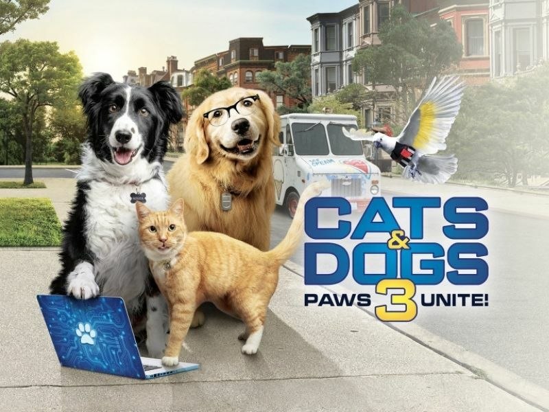 Cinema: Cats and Dogs 3: Paws Unite! gallery image