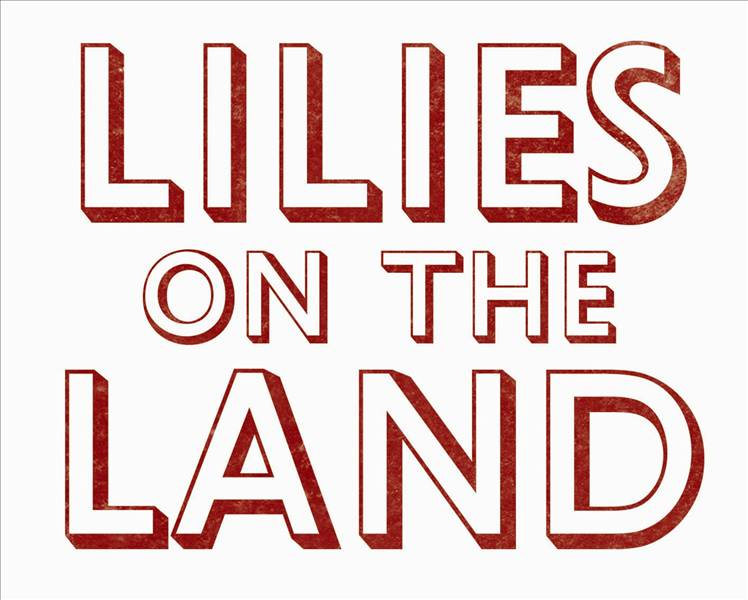 Lilies On The Land gallery image