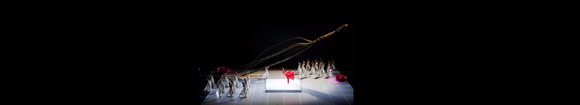 National Ballet of China — The Peony Pavillion