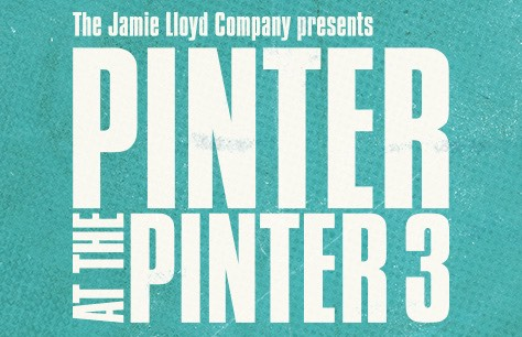 Pinter 3: Landscape/A Kind of Alaska/Monologue