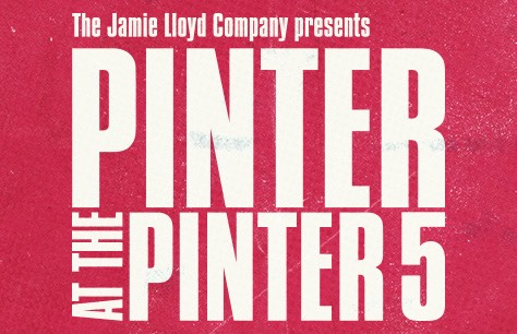 Pinter 5: The Room/Victoria Station/Family Voices