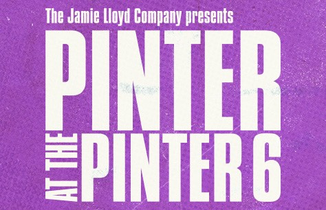 Pinter 6: Party Time/Celebration