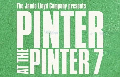 Pinter 7: A Slight Ache/The Dumb Waiter Tickets