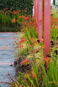 RHS Chelsea Flower Show gallery image