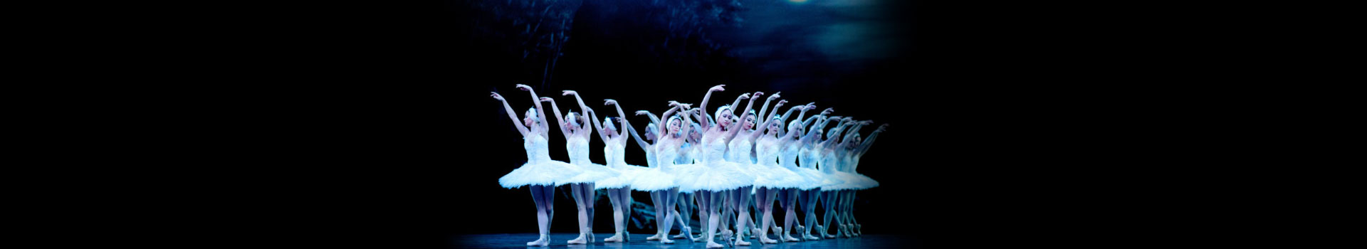 English National Ballet: Swan Lake banner image