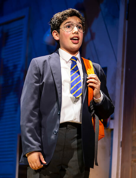 The Secret Diary of Adrian Mole aged 13 3/4 gallery image