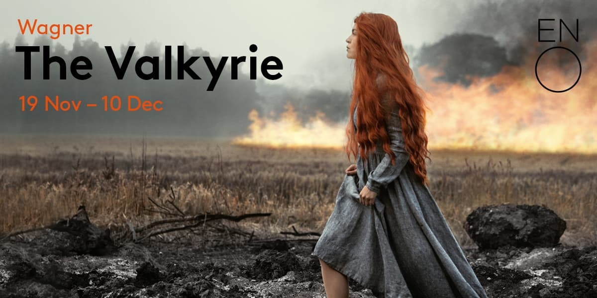 The Valkyrie banner image