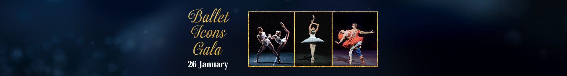 The Ballet Icons Gala banner image