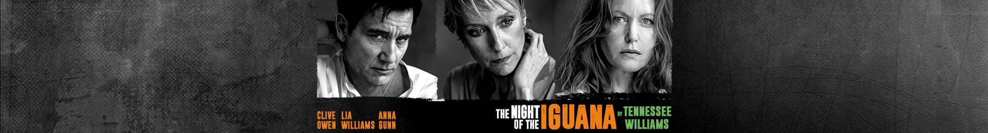 The Night of the Iguana banner image