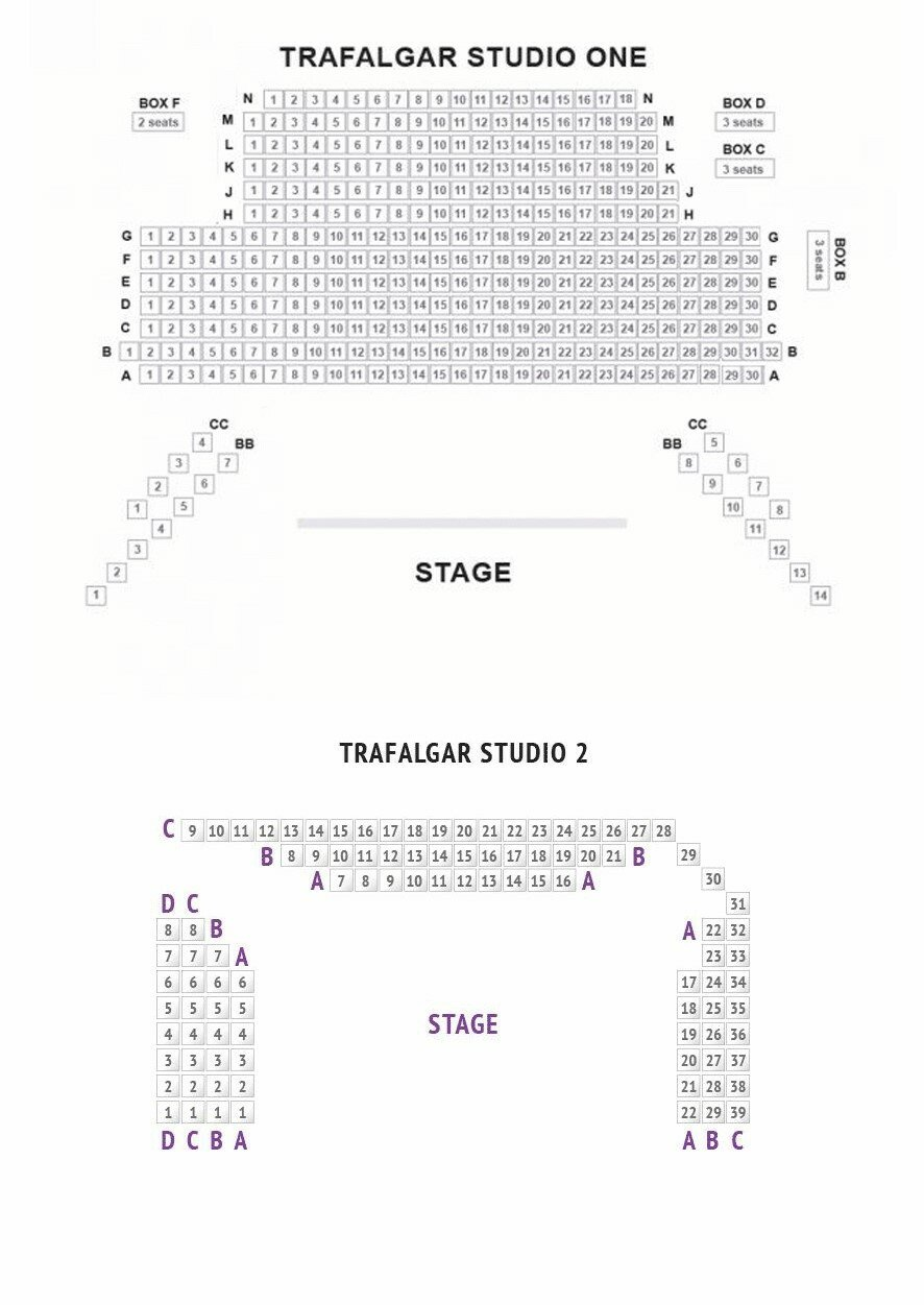 Trafalgar Theatre seating plan